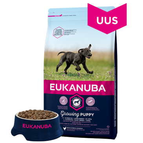 Eukanuba Puppy Large Breed koeratoit, 15 kg