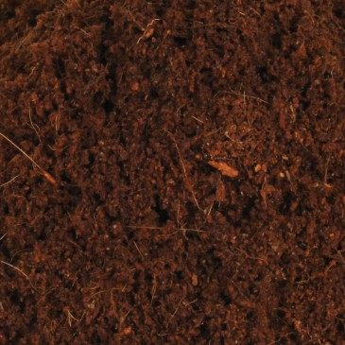 Terraariumi substraat 'Coco Soil' 2L