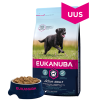 Eukanuba Adult Chicken Large Breed koeratoit, 15kg