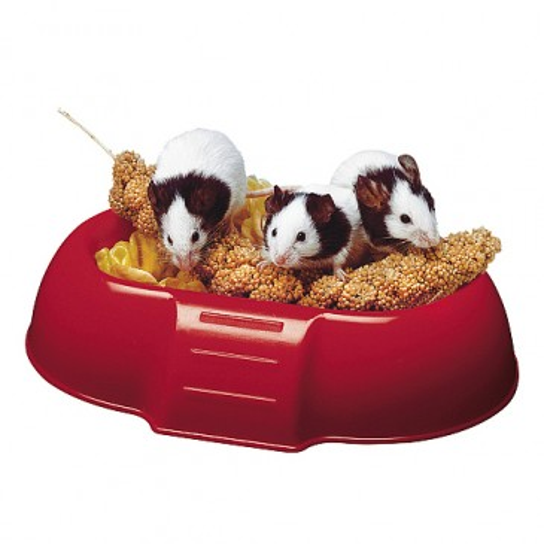 Dada, миска для грызунов, 16,5 х 11,5 х 3,5см