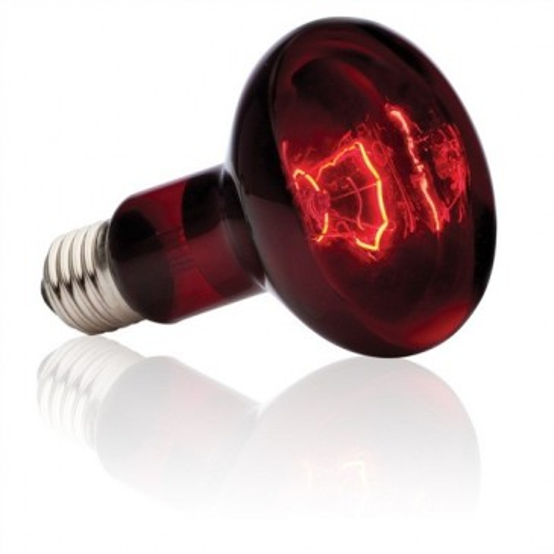 Лампа для баскинга Exo Terra Heat Glo Infrared Basking Spot R25, 100Вт