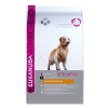 Eukanuba Golden Retriever, 12 кг