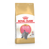 Royal Canin Kitten British Short  0.4kg